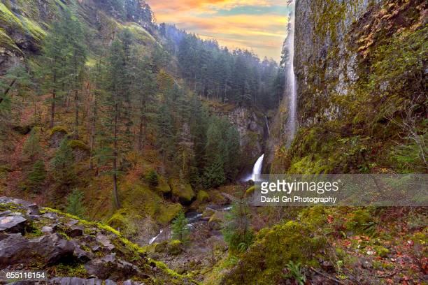 Wahclella Falls at Columbia River Gorge Sunset