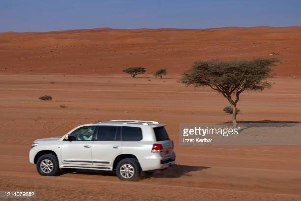 wahiba sands in central oman, desert and dunes - arabian peninsula stock pictures, royalty-free photos & images