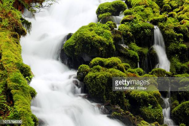 Wahkeena Creek, Columbia River Gorge National Scenic Area, Oregon, USA