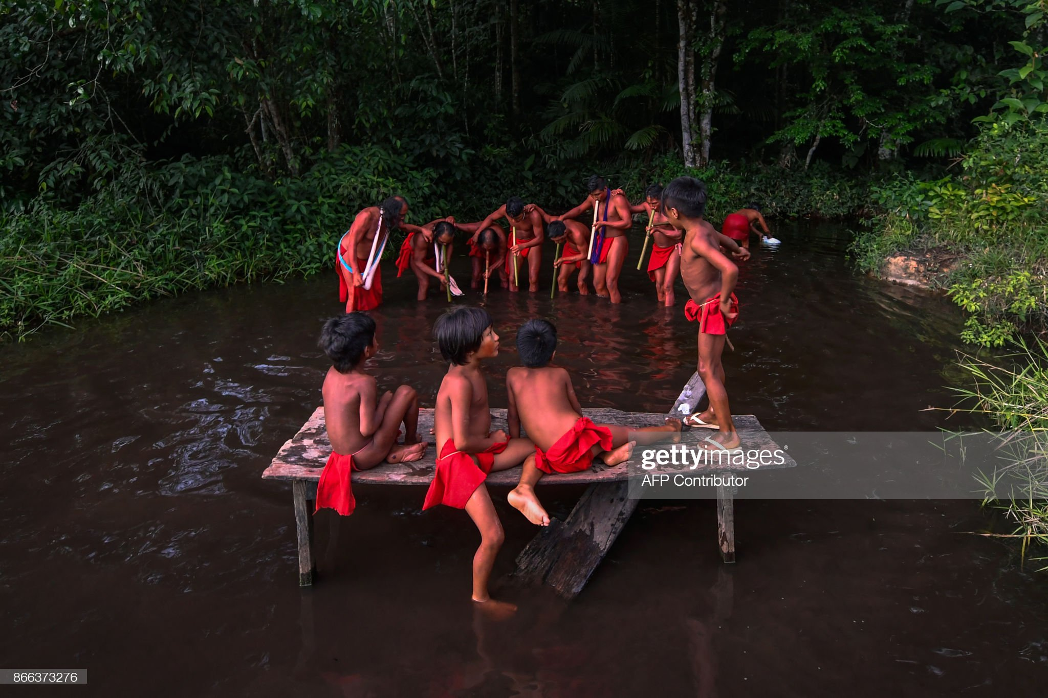 https://www.earthnews95.com/2019/11/Struggle-to-live-in-amazon.html