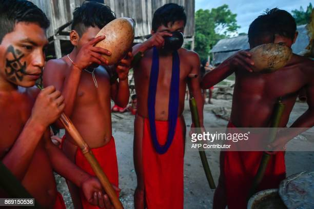 Waiapi men drinking Caxiri, a craft beer made with Manioc, imbibed daily by men, women and children when is not yet sour yet, at the indigenous...