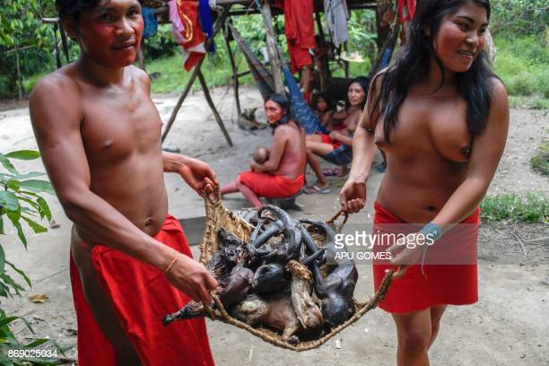 Waiapi people show roasted monkeys and deers as part of Waiapi's diet mainly based in Manioc and fruits at the reserve in Amapa state in Brazil on...