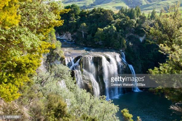 waihi falls, palmerston north, north island, new zealand - palmerston north new zealand stock pictures, royalty-free photos & images