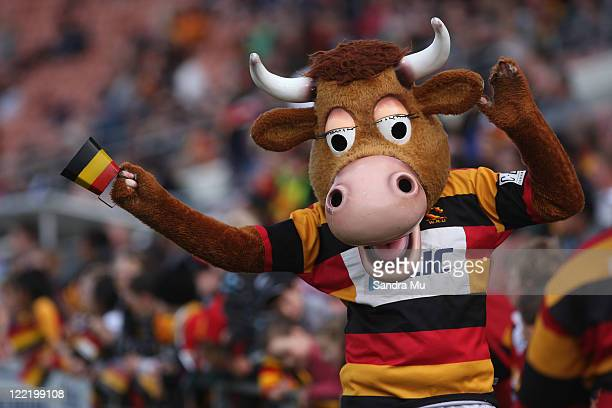 Waikato mascot Mooloo celebrates a try during the round 13 ITM Cup match between Waikato and Auckland at Waikato Stadium on August 27 2011 in...