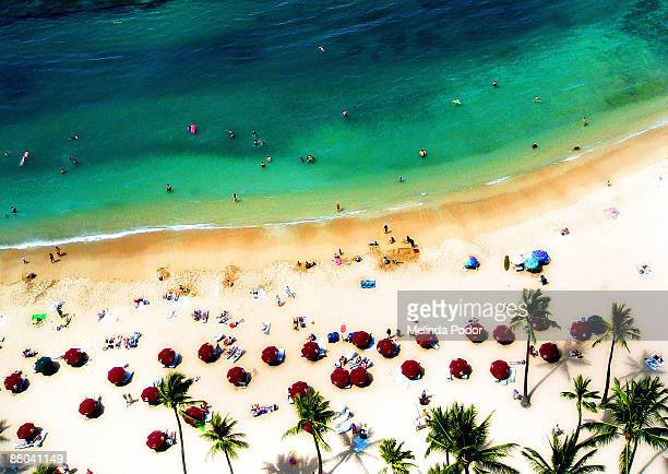 waikiki beach from above - waikiki stock pictures, royalty-free photos & images
