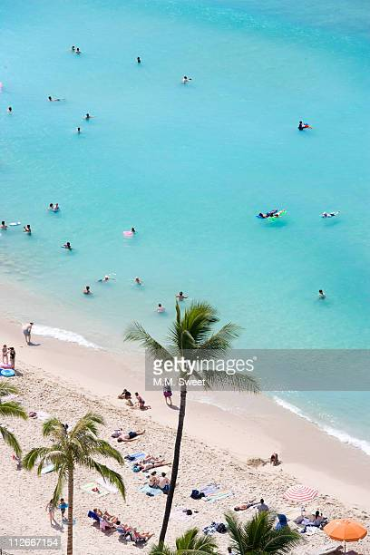 waikiki beach hawaii above - waikiki stock pictures, royalty-free photos & images
