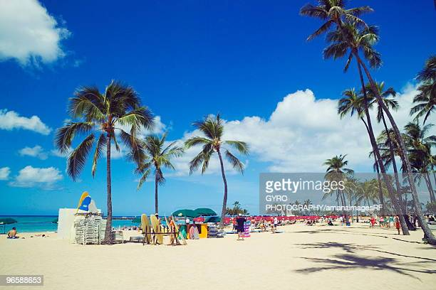 waikiki beach, hawaii, usa - ワイキキビーチ ストックフォトと画像