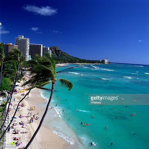 waikiki beach in a beautiful clear day - waikiki stock pictures, royalty-free photos & images