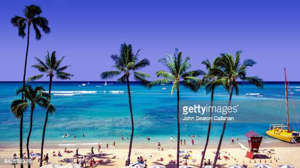 waikiki beach - waikiki stock pictures, royalty-free photos & images