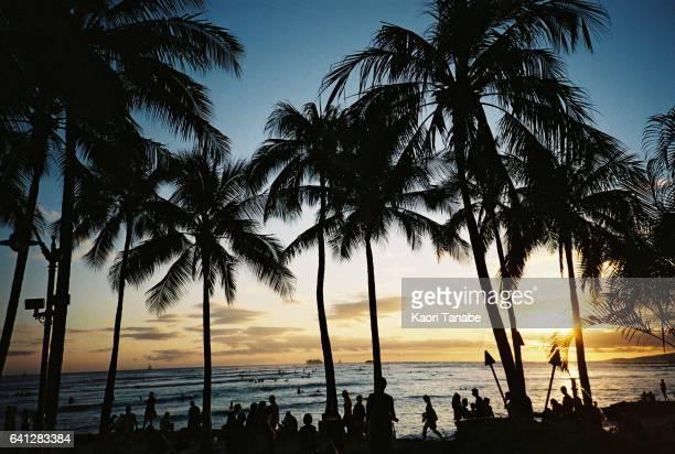waikiki beach - waikiki stock pictures, royalty-free photos & images