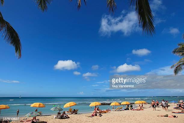 waikiki beach with tourists on oahu island. - ワイキキビーチ ストックフォトと画像