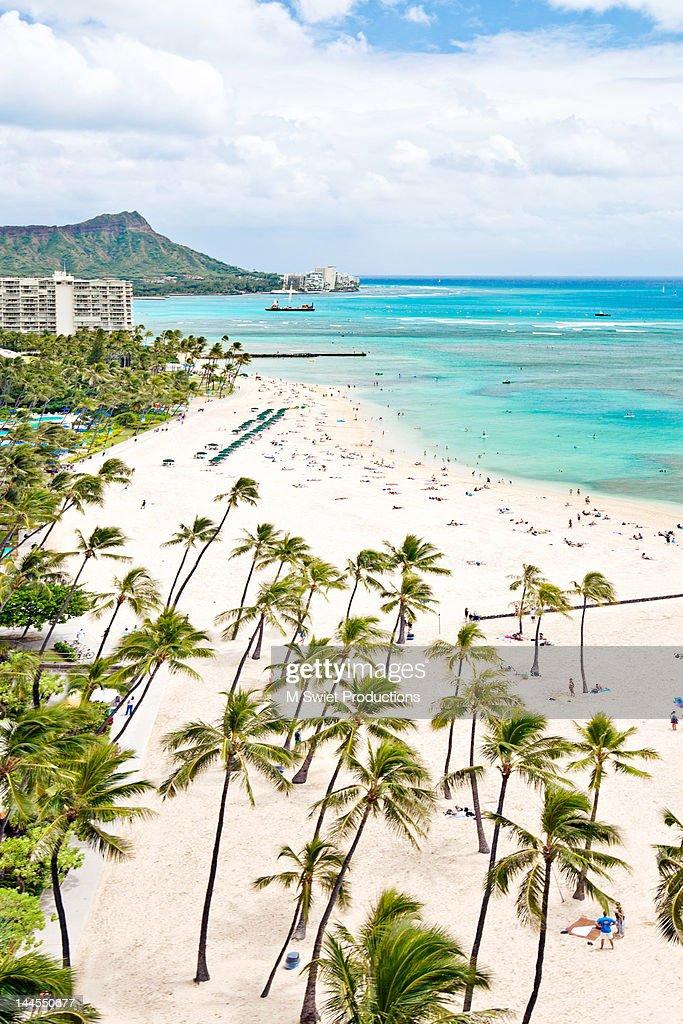 Waikiki Hawaii : Stock Photo