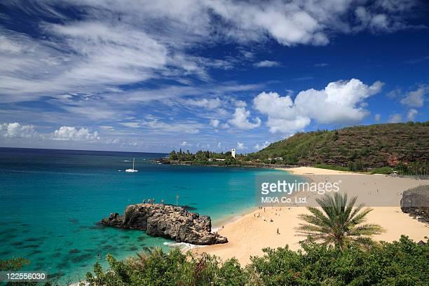 waimea bay beach, hawaii, u.s.a. - waimea bay - fotografias e filmes do acervo