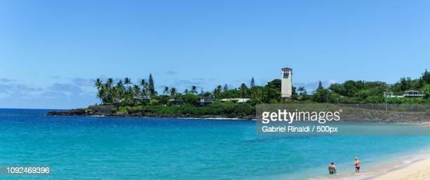 waimea bay beach park - waimea bay - fotografias e filmes do acervo