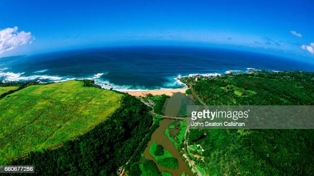 waimea bay - waimea bay hawaii stock photos and pictures