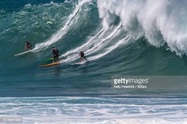 waimea bay surf action - waimea bay - fotografias e filmes do acervo