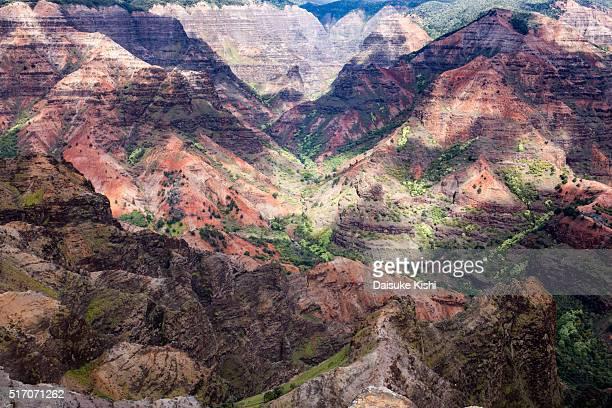 waimea canyon, kauai, hawaii - media_in_honolulu,_hawaii stock pictures, royalty-free photos & images