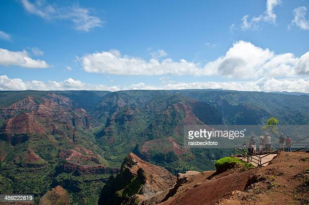 waimea canyon lookout on kauai, hawaii - waimea canyon stock pictures, royalty-free photos & images
