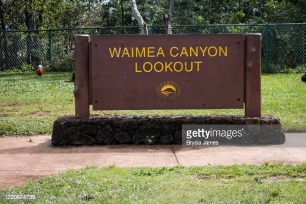 waimea canyon lookout sign - brycia james stock pictures, royalty-free photos & images