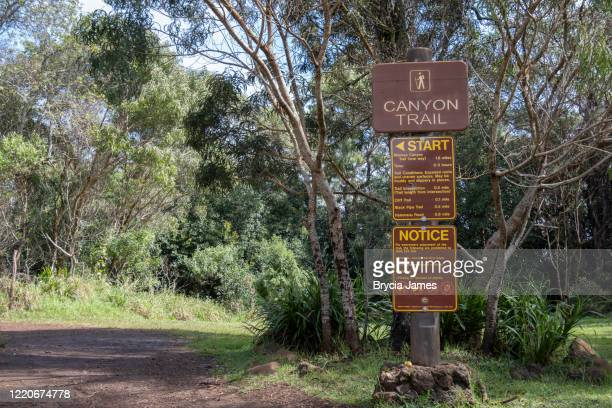 waimea canyon trail sign - brycia james stock pictures, royalty-free photos & images