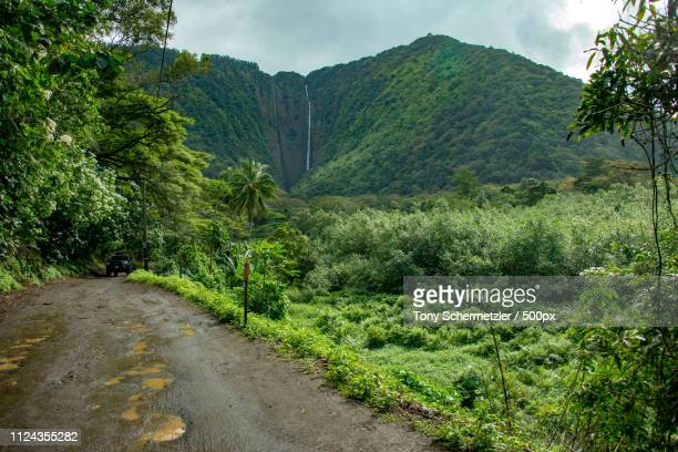 waimea, united states - waipio valley stockfoto's en -beelden