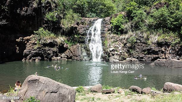 waimea valley waterfall - waimea valley stock photos and pictures