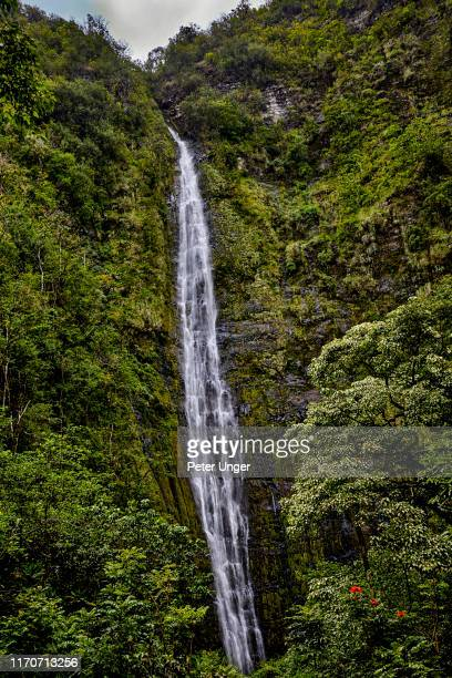 waimoku falls at end of pipiwai trail,hana,maui,hawaii,usa - hannah brooks stock pictures, royalty-free photos & images