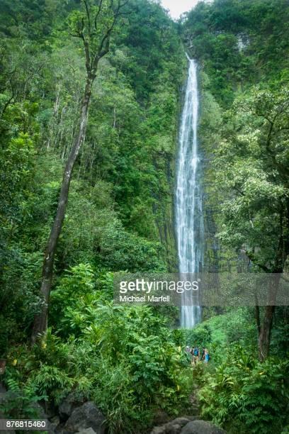 waimoku falls - haleakala national park - hawaiian waterfalls stock pictures, royalty-free photos & images