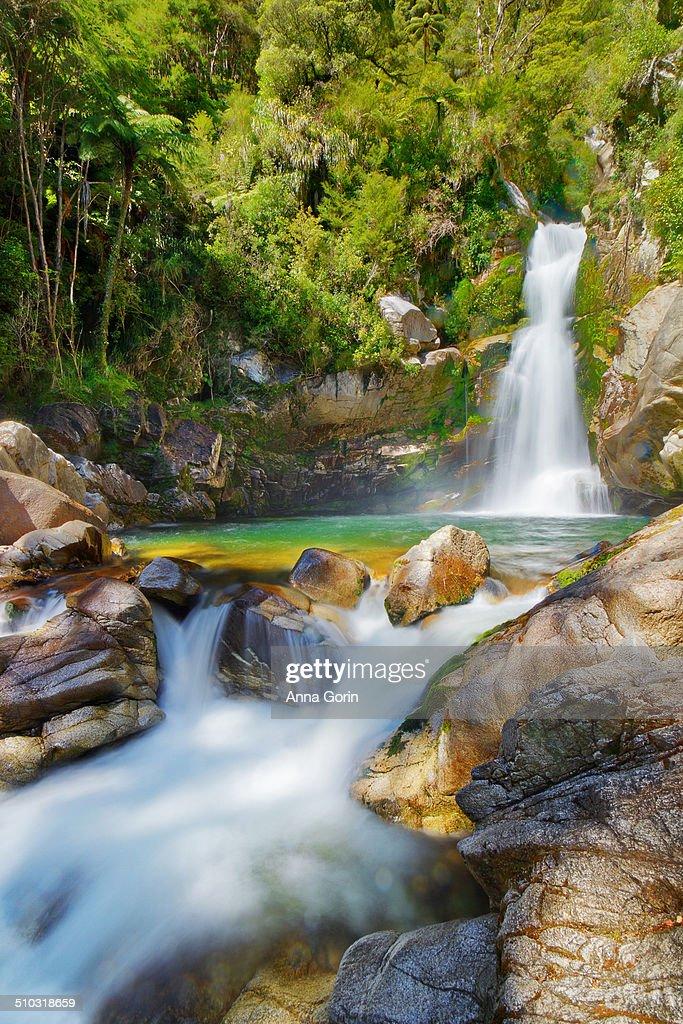 Wainui Falls, Abel Tasman National Park, NZ : Stock Photo