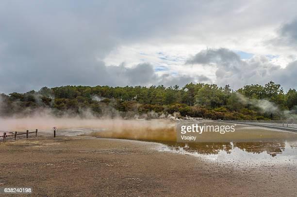 wai-o-tapu thermal wonderland, roturua, new zealand. - vsojoy stockfoto's en -beelden
