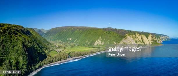 waipio beach and valley,big island,hawaii,usa - black sand stock pictures, royalty-free photos & images