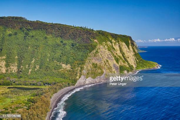 waipio beach and valley,big island,hawaii,usa - waipio valley stockfoto's en -beelden