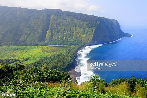 waipio valley, big island, hawaii - waipio valley stockfoto's en -beelden