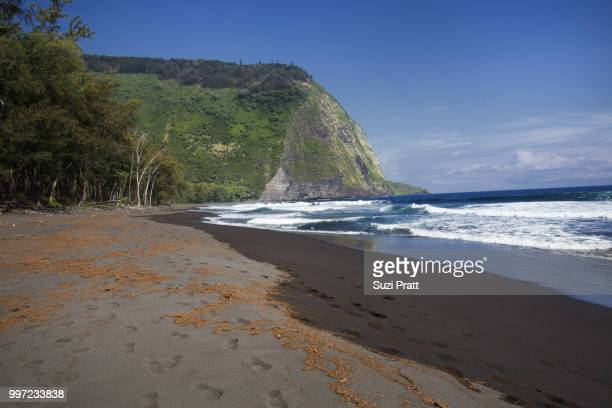 waipio valley black sand beach in hawaii - waipio valley stockfoto's en -beelden