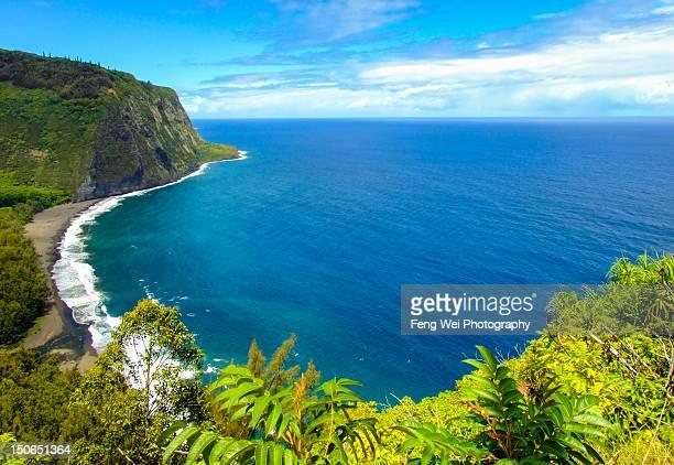waipio valley - ハワイ島 ストックフォトと画像
