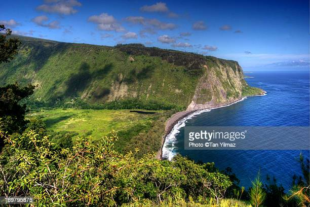 waipio valley - waipio valley stockfoto's en -beelden