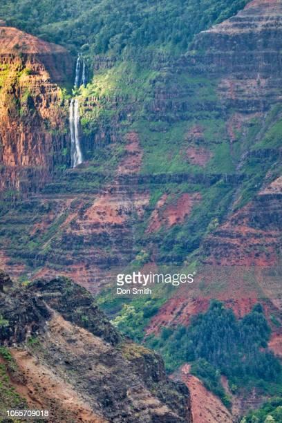 waipoo falls - don smith stockfoto's en -beelden