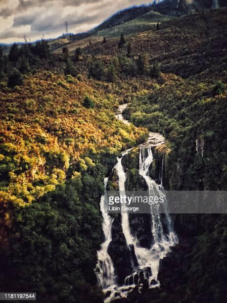 waipunga waterfalls new zealand - ホークスベイ地域 ストックフォトと画像