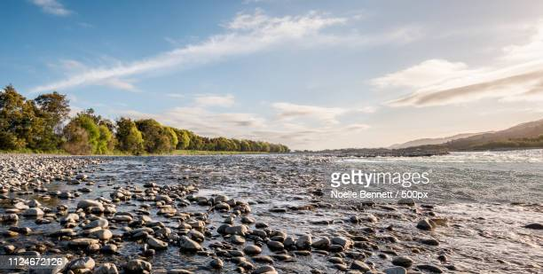 wairau country - river bed stock photos and pictures
