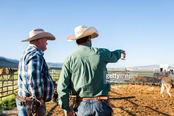 Waist up rear view ranchers pointing and planning the days work animal pen with young cattle
