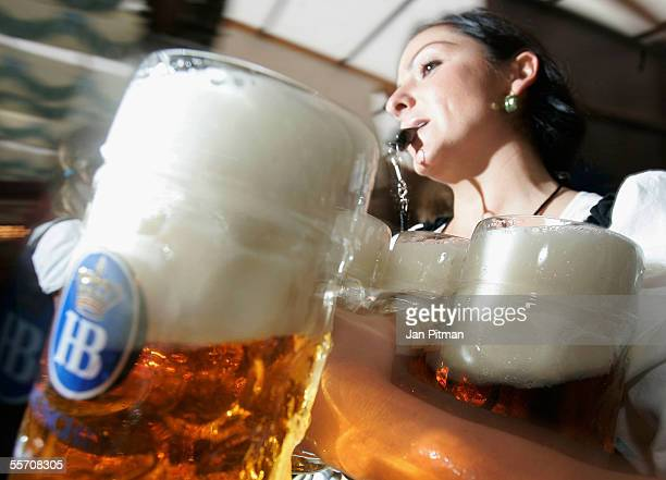 A waitress carries beer mugs during the opening ceremony for the Oktoberfest on September 17 2005 in Munich Germany About 6 million visitors are...