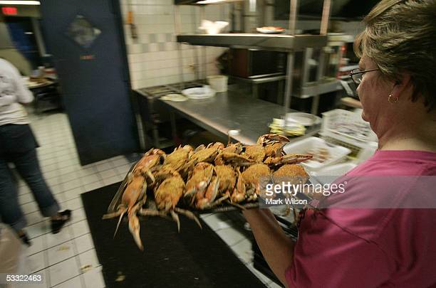 A waitress gets ready to serve a plate of Blue Crabs at Abner's Crabhouse August 3 2005 in Chesapeake Beach Maryland The Maryland Blue Crab has been...