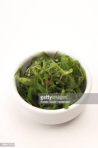 Wakame algae