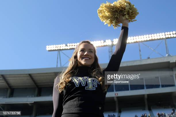 Wake Forest Demon Deacon cheerleader during the Birmingham Bowl between the Memphis Tigers and the Wake Forest Demon Deacons on December 22 2018 at...