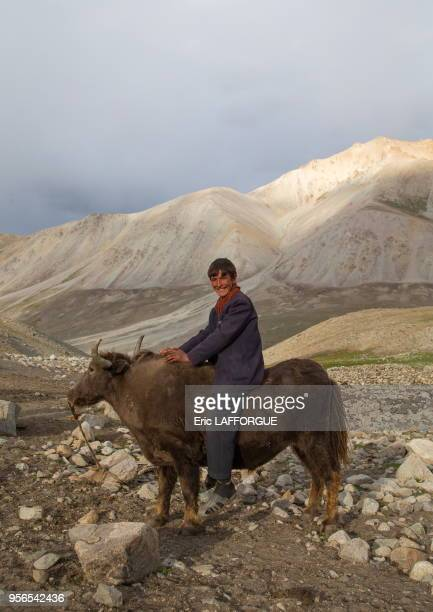 Wakhi teenage boy riding a yak Big pamir Wakhan Afghanistan