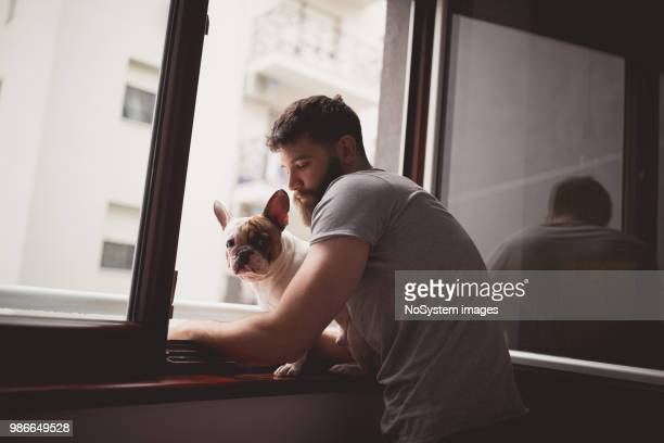 waking up with his dog, looking through the window - one man only stock pictures, royalty-free photos & images