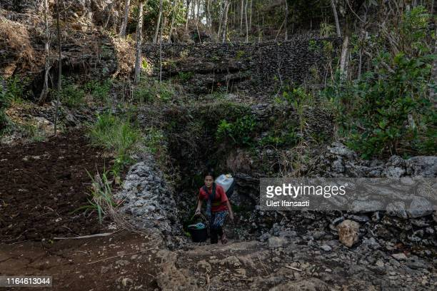 Wakiyem carries a jerrycan full of water from a cave at Klepu village Sawahan Kulon on August 28 2019 in Pacitan East Java province Indonesia During...