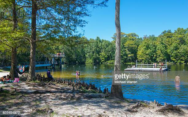 wakulla springs swimming hole - tallahassee stock pictures, royalty-free photos & images