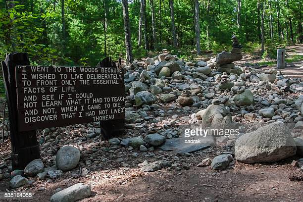 walden pond cabin site - walden pond stock pictures, royalty-free photos & images