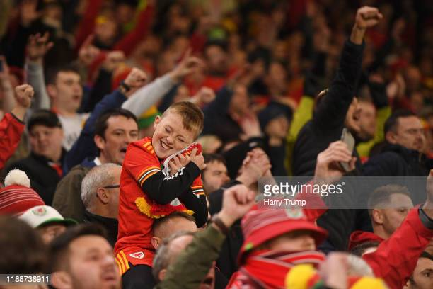 Wales fan celebrates during the UEFA Euro 2020 qualifier between Wales and Hungary so at Cardiff City Stadium on November 19 2019 in Cardiff Wales